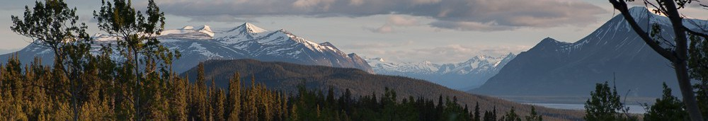 cropped-cropped-view-from-cabin-11.jpg